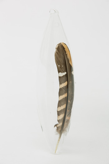 Roost - Pheasant Feather Ornament