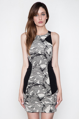 Funktional Pictured Paneled Tank Dress