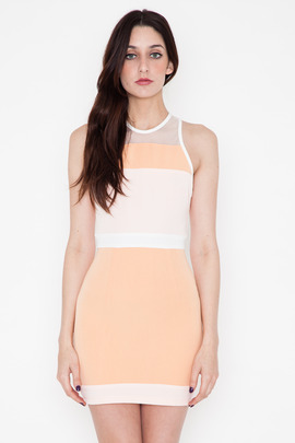 Shona Joy The Obsession Panel Body Con Dress